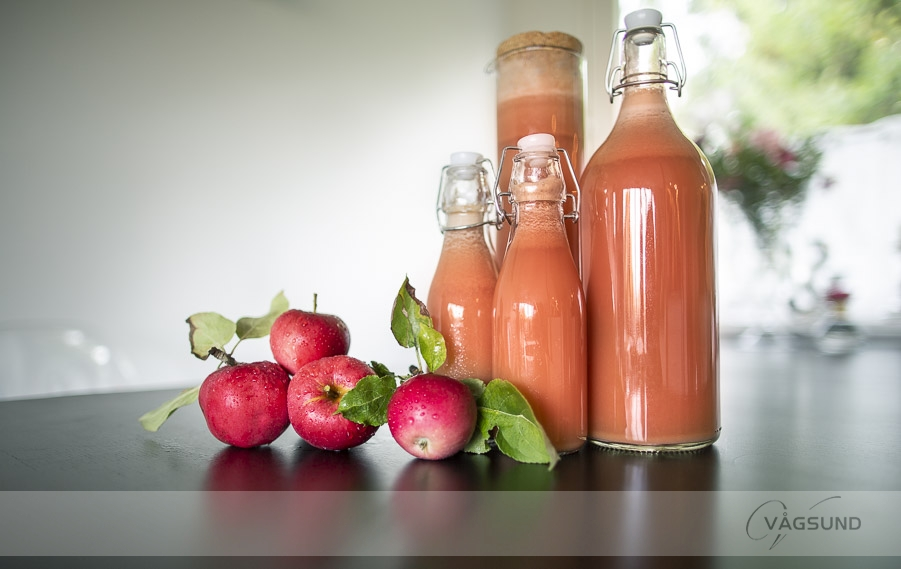 Äpplemust, äpple, Fotograf Vågsund, Stenungsund, porträtt, bröllopsfotograf